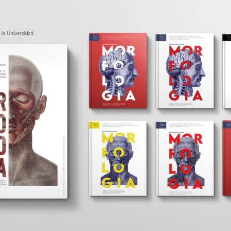 unsaac-revista-peruana-de-morfologia-qori-studio